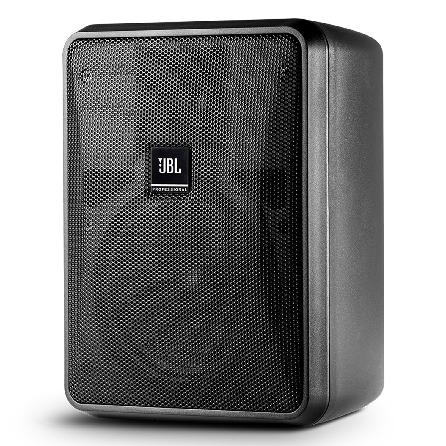 Compact 8-Ohm Indoor/Outdoor Background/Foreground Speaker