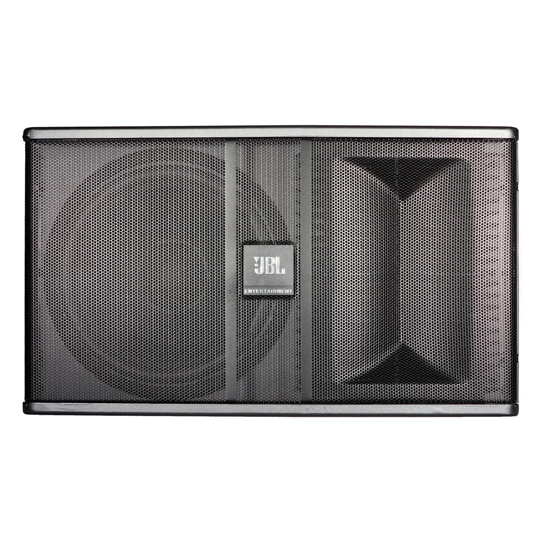 10 Inch Full Range Loudspeaker System
